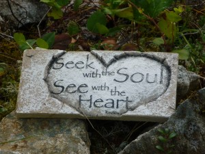 Seek with the Soul